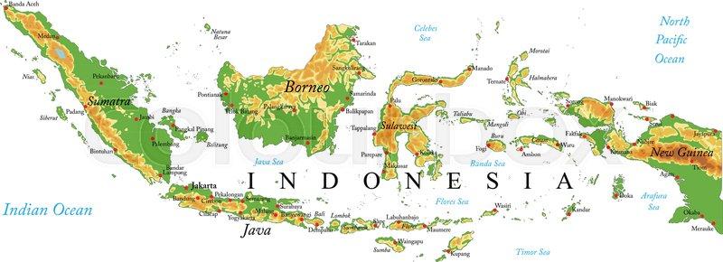 محدودیت های صادرات مرجانی اندونزی برداشته شد