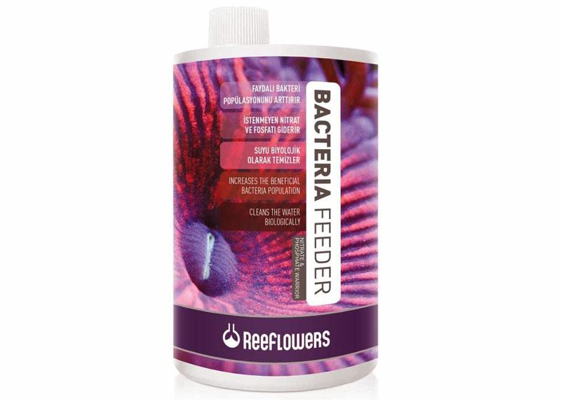 باکتری فیدر