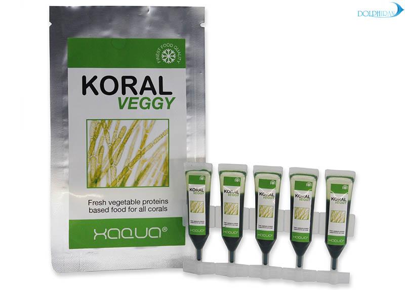 غذای پروتئین گیاهی جدیدی به نام  KoralVeggy؛ از سری محصولات شرکت Xaqua