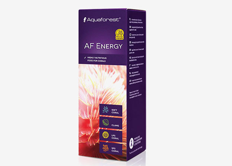 AF Energy انرژی آکوافارست